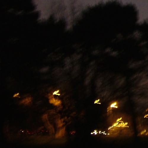 the way home waving